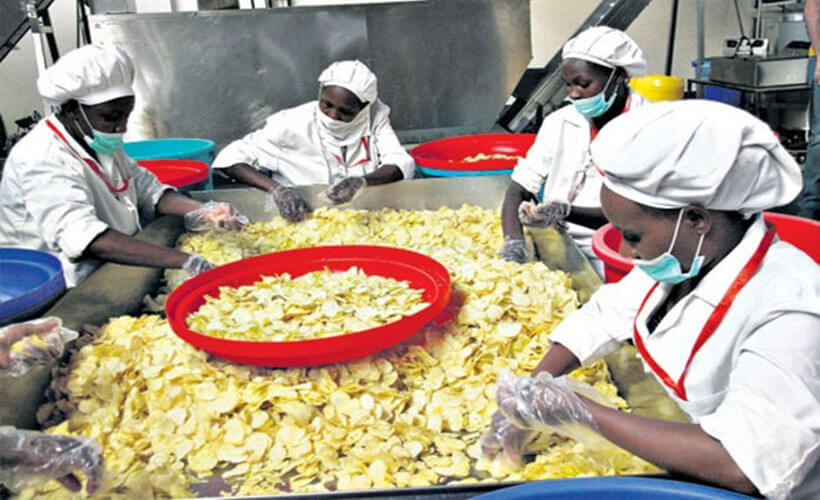 Complete information for the business of making potato chips