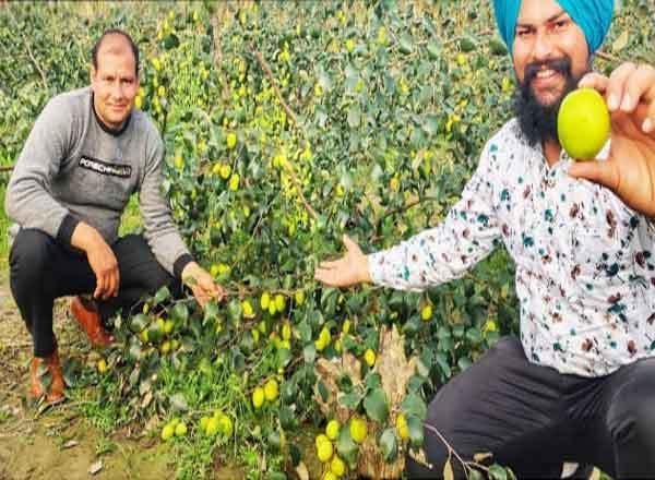 Agricultural Success Story of farmer Pankaj and Jai