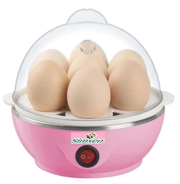 Electric Egg