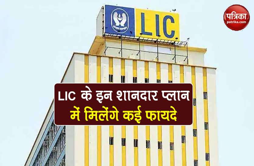 Invest in these schemes of LIC, get 1 crore insurance and many benefits