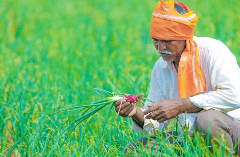 Meri Fasal Mera Byora Scheme: Haryana government gave relief to farmers, increased registration date, know how to apply