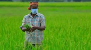 India Agriculture: Farmers showed their mettle, India is among the top 10 countries exporting agricultural products