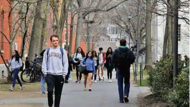 It will be difficult for foreign students to stay in the US after studies, Bill introduced against 'OPT' program, Indians will also be affected