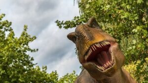 Indonesia is building 'Jurassic Park', people will pass among the dangerous Komodo dragon, but what is UNESCO afraid of?