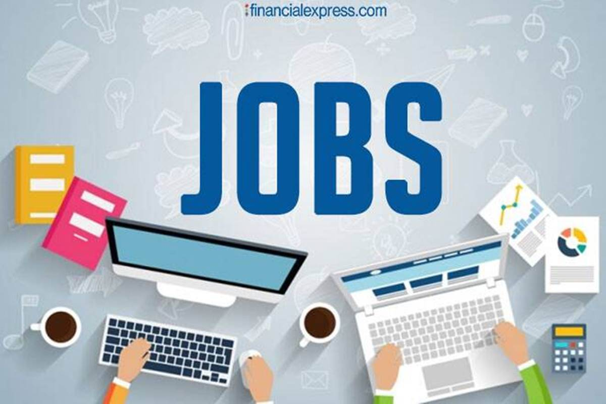 Job Revivals: Rapid growth in hiring of corporate companies, jobs have started increasing in many industries of service sector including IT, retail