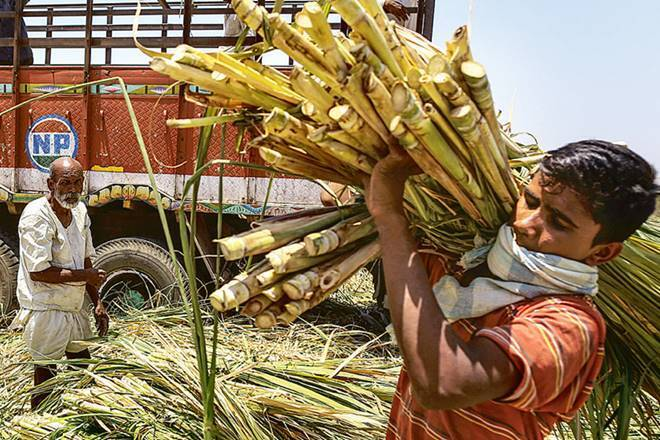 When the government increased the FRP of sugarcane, the sugar mill owners said - permission should be given to sell sugar too expensive